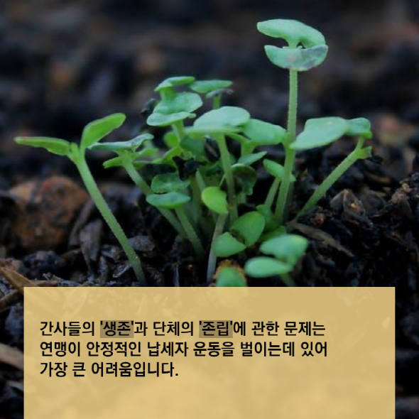 S_tyle-jwe-4-1545370844.png